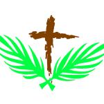Palm Passion